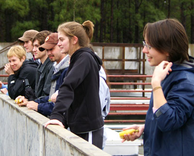 Students Learn About Environmental Humanities at Chimpanzee Sanctuary